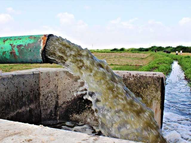 ہڈیارہ ڈرین سے 70 فیصد سبزیاں اورفصلیں آلودہ پانی سے کاشت کی جارہی ہیں فوٹو: ایکسپریس