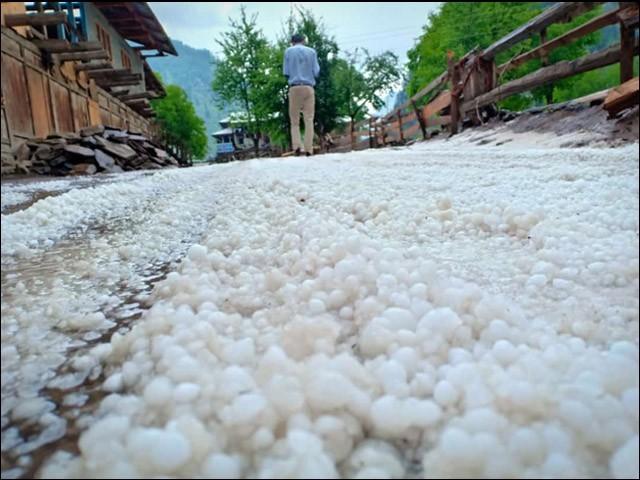 آزاد کشمیر کے گاؤں کیل میں شدید ژالہ باری سے فصلیں تباہ ہوگئیں۔ (فوٹو: بلاگر)
