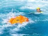 ریموٹ کنٹرول سے چلنے والی لائف بوائے ڈولفن ون  جو ڈوبتے ہوئے افراد کو بچاسکتی ہے۔ فوٹو: اوشن الفا