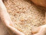 2013 میں میکسیکو بھی پاکستانی چاول کی درآمد پر پابندی عائد کرچکاجو ہنوز برقرار ہے