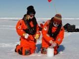 امریکہ میں برساتی پانی اور آرکٹک میں برف کے ذرات میں پلاسٹک کے ذرات کی بڑی تعداد نوٹ کی گئی ہے۔فوٹو:ایلفرڈ ویگنر انسٹی ٹیوٹ