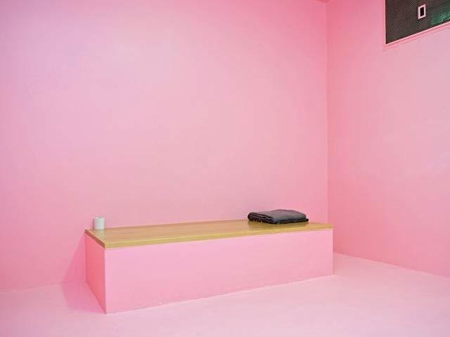 سوئٹزرلینڈ کی دس جیلوں میں ہلکی رنگت کا گلابی رنگ کیا گیا ہے جس سے قیدیوں پر اچھے اثرات مرتب ہوئے ہیں۔ (فوٹو: اوڈٹی سیںٹرل)