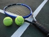 پاکستان سے ڈیوس کپ ٹینس ٹائی نومبر تک ملتوی، حتمی تاریخوں کا 9 ستمبر تک اعلان  فوٹو: فائل