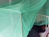 رواں سال کانگو کے شبے میں لائے گئے مریضوں کی تعداد46ہوگئی ہے، فوٹو: فائل