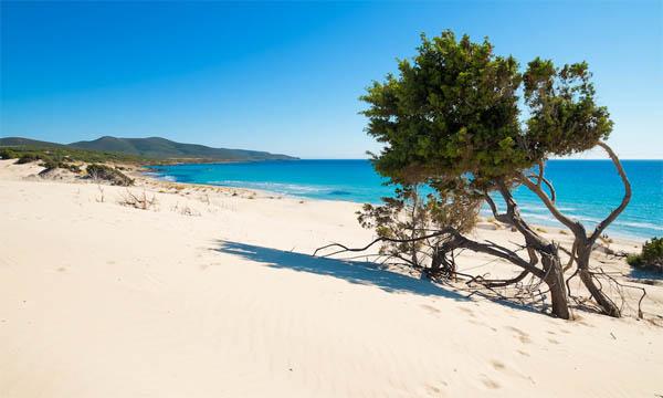 Sardena white sand 3