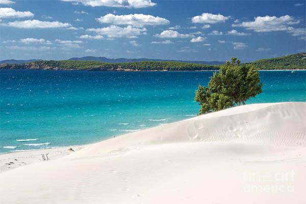Sardena white sand 4