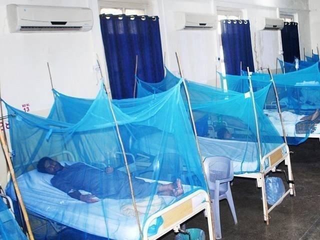 اسپتالوں میں داخل ڈینگی مریضوں کی تعداد 496 ہوگئی، ڈینگی رسپانس یونٹ