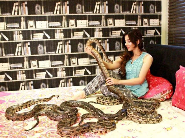 رابی پیرزادہ غیر قانونی طور پر مگرمچھ اور اژدھے رکھنے کے کیس میں پیش نہ ہوئیں فوٹو:فائل