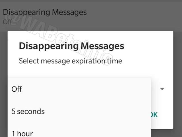 واٹس ایپ ڈس اپیئرنگ میسج کے نام سے ایک نیا آپشن پیش کررہا ہے جس کے تحت آپ 5 سیکنڈ سے ایک گھنٹے کے وقفے میں اپنا میسج ازخود ڈیلیٹ کے آپشن میں شامل کرسکتے ہیں جو بی ٹا ورژن کے اسکرین شاٹ میں نمایاں ہے ۔ فوٹو:اینڈروئڈ پولیس