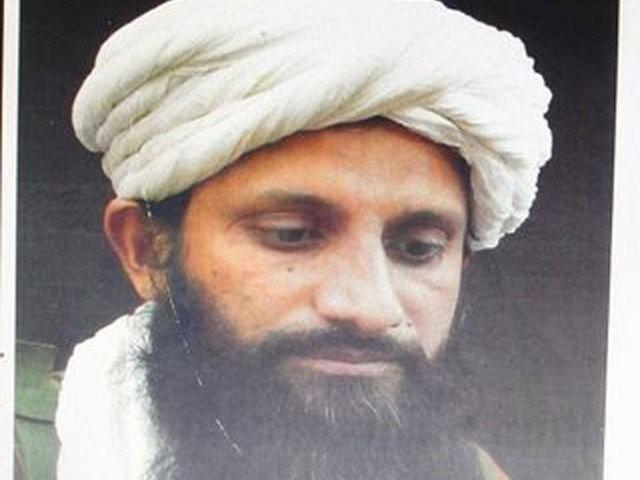 عاصم عمر القاعدہ ایشیا کا سربراہ تھا اور طالبان کمپاؤنڈ میں پناہ لے رکھی تھی۔ فوٹو : این ڈی ایس