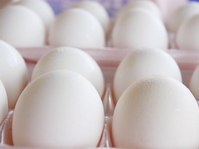 ملزمان سے انڈوں سے لدا ٹرک بھی برآمد کیا گیا ہے، پولیس فوٹو: فائل