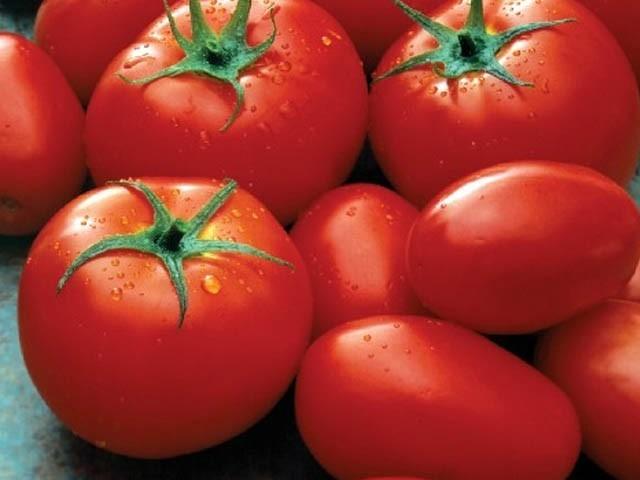 ٹماٹر 250 سے 300 روپے فی کلو فروخت ہونے لگا۔ فوٹو:فائل