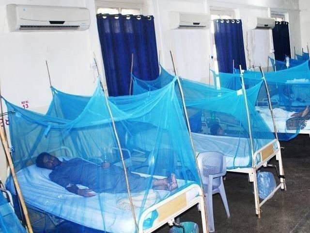 صرف صوبائی دارالحکومت میں ڈینگی سے متاثرہ مریضوں کی تعداد 2659 ہوگئی ہے۔فوٹو:فائل
