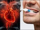 روزانہ تین یا زیادہ مرتبہ دانت صاف کرنے سے دل کے دورے کا امکان بھی نمایاں طور پر کم ہوگیا۔ (فوٹو: فائل)