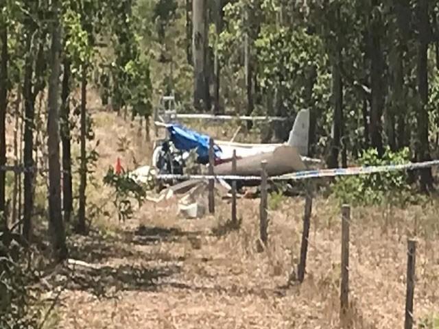 ممکنہ طور پر طیارہ درخت سے ٹکرا کر بے قابو ہوگیا۔ فوٹو : سوشل میڈیا