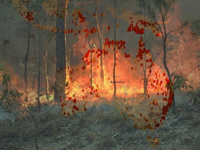 اس آتشزدگی سے صرف 2 ماہ میں 400 ملین ٹن کاربن ڈائی آکسائیڈ زمینی فضا میں شامل ہوچکی ہے۔ (فوٹو: فائل)