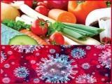 مدافعتی نظام اور غذا کی اہمیت