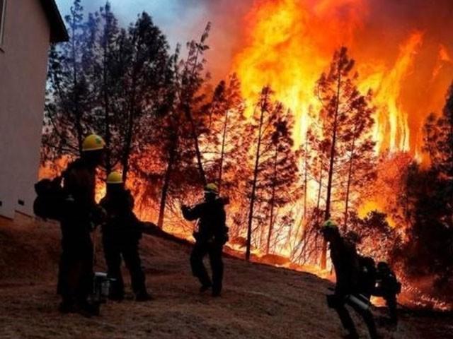 ہلاک ہونے والوں میں فائر بریگیڈ کا عملہ اور محکمہ جنگلات کے گائیڈ شامل ہیں، فوٹو : فائل