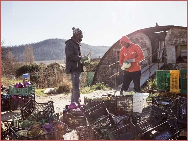برسوں ظلم سہنے والے افریقی تارکین وطن مشکل وقت میں اطالوی باشندوں کے مددگاربن گئے۔ فوٹو: فائل
