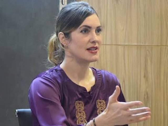 امریکی بلاگر نے پاکستان پیپلز پارٹی کی قیادت پر سنگین الزامات عائد کیے ہیں۔ فوٹو، انترنیٹ