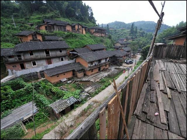 چینی قصبے ڈِنگ وُولنگ میں مچھر بالکل بھی نہیں پائے جاتے حالانکہ یہ گھنے درختوں، تالابوں اور چھوٹی چھوٹی جھیلوں سے گھرا ہوا ہے۔ (تصاویر بشکریہ: پیپلز ڈیلی آن لائن)