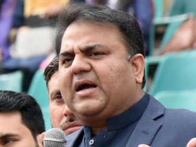 سیاست کمزور دل حضرات کا کھیل نہیں، وفاقی وزیر فوٹو: فائل