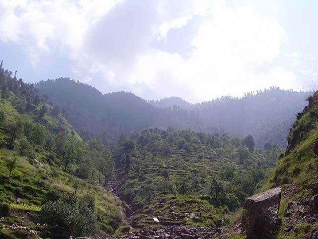 express urdu