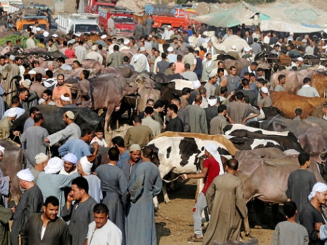 عید الفطر پر لاپروائی کے باعث ہی کورونا کی وبا تیزی سے پھیلی