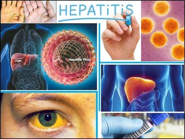 ہیپاٹائٹس کے بڑھتے کیسزکوروکنے کیلیے حفاظتی اقدامات کرنے کی ضرورت ہے،سیمینارسے ڈاکٹرنداکاخطاب ۔  فوٹو : فائل