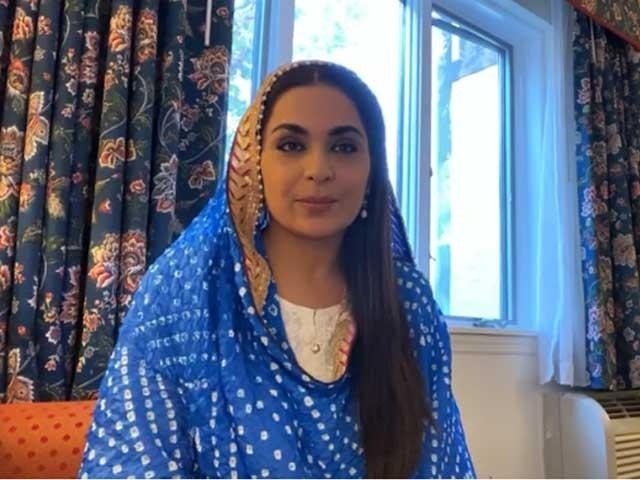 اداکارہ میرا نے مالی امداد کے لیے لاہور آرٹس کونسل سے رجوع کیا تھا۔ فوٹو، فائل