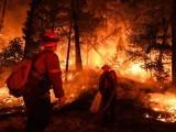 جمعے کو لگنے والی آگ نے 12 ہزار ایکڑ رقبے کو اپنی لپیٹ میں لے لیا ہے، فوٹو : فائل