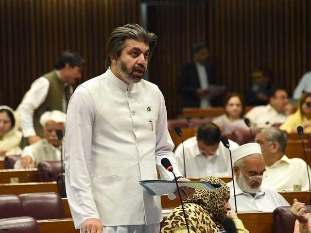 جب ریاست کی جانب سے سزا نہیں دی جاتی تو لوگ قانون ہاتھ میں لیتے ہیں ، علی محمد خان فوٹوفائل