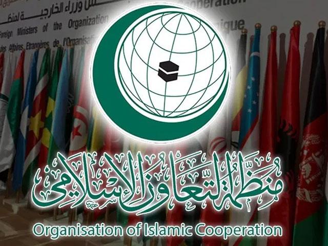 جینیوا میں جاری اقوام متحدہ کی کونسل برائے انسانی حقوق کے اجلاس میں پاکستانی سفیر نے او آئی سی کی نمائندگی کی(فوٹو، فائل)
