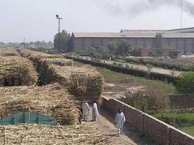 کسانوں کی 1 ارب روپے سے ذائد رقم مل مالکان کی طرف واجب الادا ہے، اور مل مالکان 3 ارب کے نادہندہ بھی ہیں، رپورٹ.