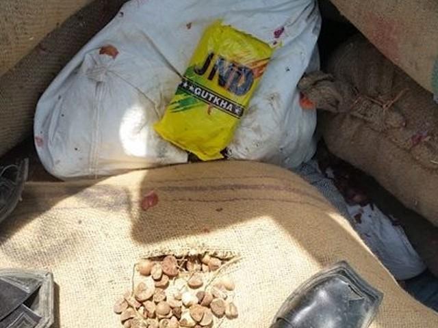 کارروائی کے دوران 10 ٹن بھارتی گٹکا، 1500 ٹن تمباکو اور 56.2 ٹن چھالیہ برآمد ہوئی، کسٹمز (فوٹو: فائل)