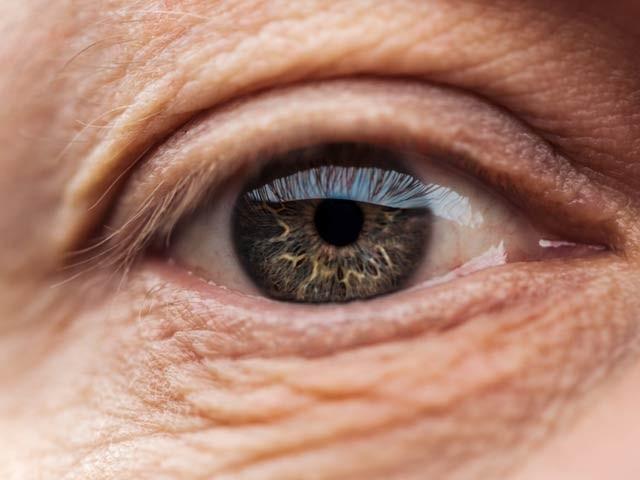 امریکی ماہرین نے جین تھراپی کے ذریعے مکمل نابینا چوہوں میں بصارت لوٹانے کا کامیاب تجربہ کیا ہے۔ فوٹو: فائل