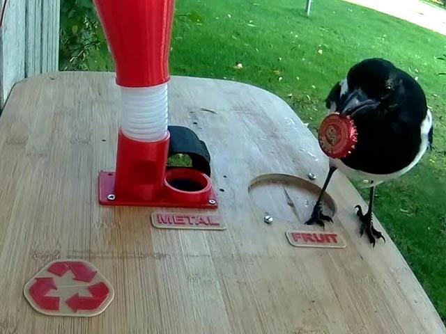 سویڈن کے مہر کو پرندوں کو کھانا فراہم کرنے والی والی مشین بنائی ہے جو بوتل کی چھڑکتی ہے اور اسے دودھ فراہم کرتی ہے۔  فوٹو: بورڈ پانڈا