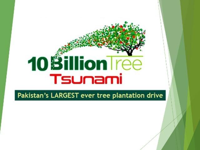 سندھ حکومت کو جھیلوں اور شاہراؤں کے اطراف درخت لگانے کا حکم فوٹو: فائل