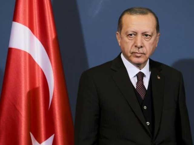 اس سے قبل ترک صدر فرانسیسی صدر کو دماغی معائنے کا بھی مشورہ دے چکے ہیں، فوٹو: فائل