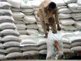 5 لاکھ ٹن چینی ٹریڈنگ کارپوریشن جب کہ 3 لاکھ ٹن نجی شوگر ملز درآمد کریں گی فوٹو: فائل