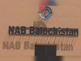 ملزمان نے قومی خزانے کو 117.9 ملین روپے کا نقصان پہنچایا۔ نیب ذرائع