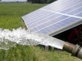 ٹیوب ویلوں کی سولرئزایشن سے کسانوں کو بلاتعطل بجلی کی فراہمی ممکن ہوگی۔ فوٹو:فائل