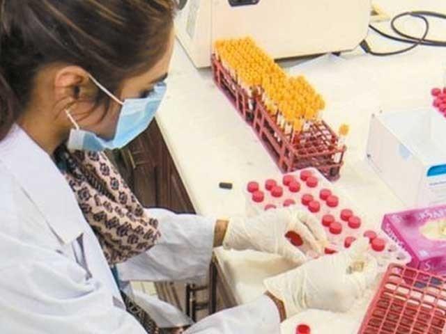 کورونا وبا کے عالمی بحران کے دوران آپ نے کئی بار سنا ہوگا کہ '' ہرڈ امیونٹی '' حاصل ہو جائے تو وائرس سے نمٹنا آسان ہو جائے گا۔ فوٹو: فائل