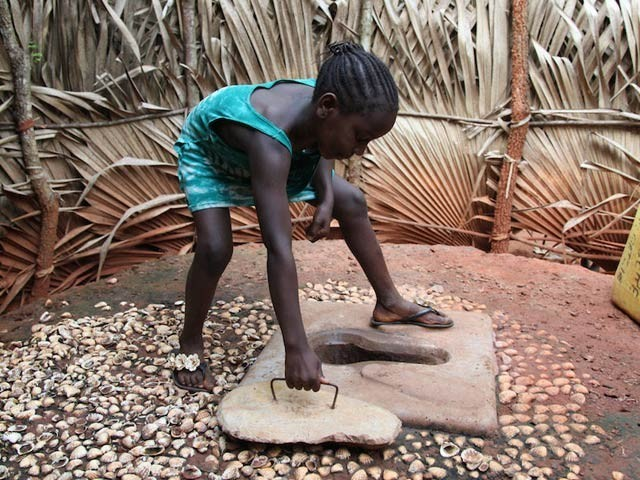 افریقہ میں ایک پٹ لیٹرین نمایاں ہیں اور ماہرین کے مطابق مٹی قدرتی طور پر کروڑوں ٹن انسانی فضلہ فلٹر کرتی ہے جس کی سالانہ لاگت کھربوں روپے ہوسکتی ہے۔ فوٹو: فائل