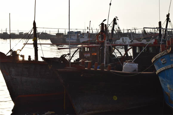 Indian fisherman arrest 3