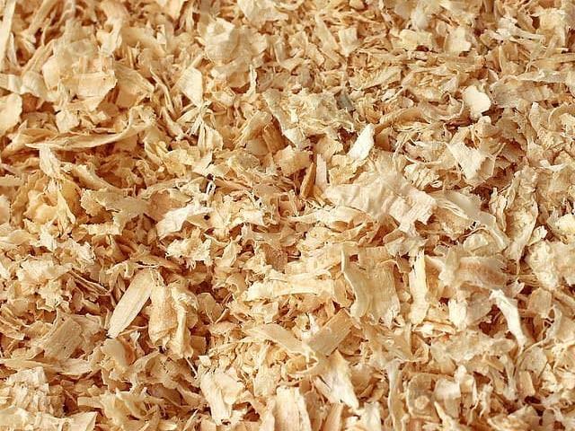 صرف 90 دن میں ختم ہوجانے والا، لکڑی سے بنا پلاسٹک