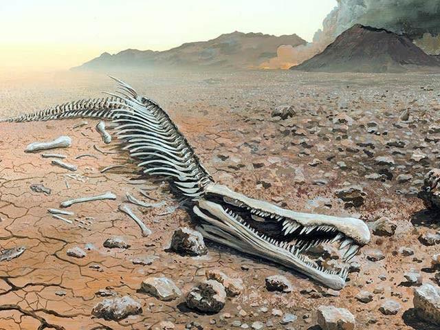 لگ بھگ 25 کروڑ سال قبل زمین پر کاربن ڈائی آکسائیڈ گیس کے اخراج اور درجہ حرارت میں اضافے سے 70 فیصد انواع ناپید ہوگئی تھیں (فوٹو: فائل)