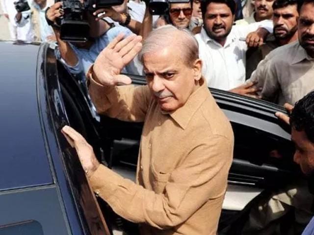 ذیلی کمیٹی نے شہبازشریف کا معاملہ وفاقی کابینہ کو بھیج دیا، شہزاد اکبر