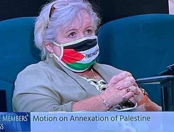 Irish parliment wearing mask