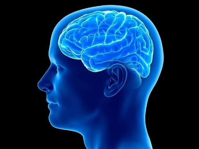 بعض نہایت سادہ تجاویز پر عمل کرکے دماغ کو تندرست اور توانا رکھا جاسکتاہے۔ فوٹو: فائل